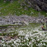 A spasso per la Val Nambrone