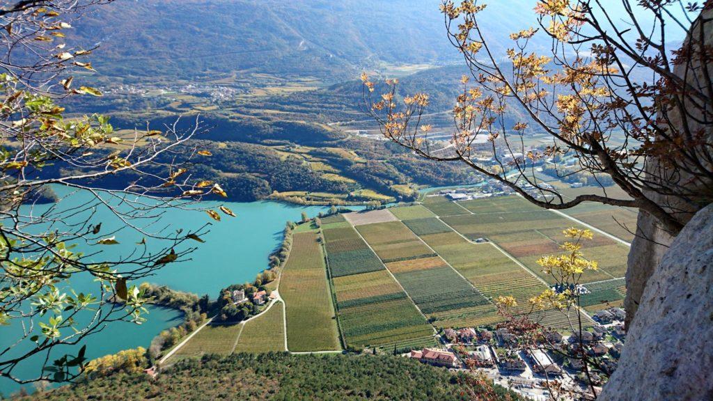 altra vista, stavolta della zona delle vigne a pochi metri dalle sponde del lago.Qui se non ricordo male fanno il Bardolino