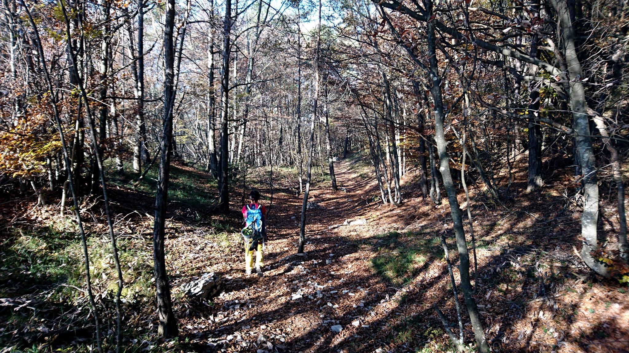 la discesa sarà in un bellissimo bosco che conduce ad una frazione.Da lì poi, una mulattiera mista a sentiero scosceso riportano verso Sarche