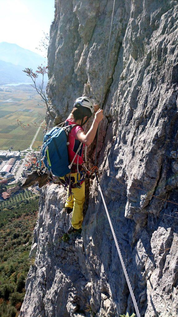 Erica sul primo traversino esposto al termine del primo muro