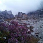 Cima Brenta da Vallesinella