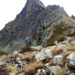 Cima monte Frisson
