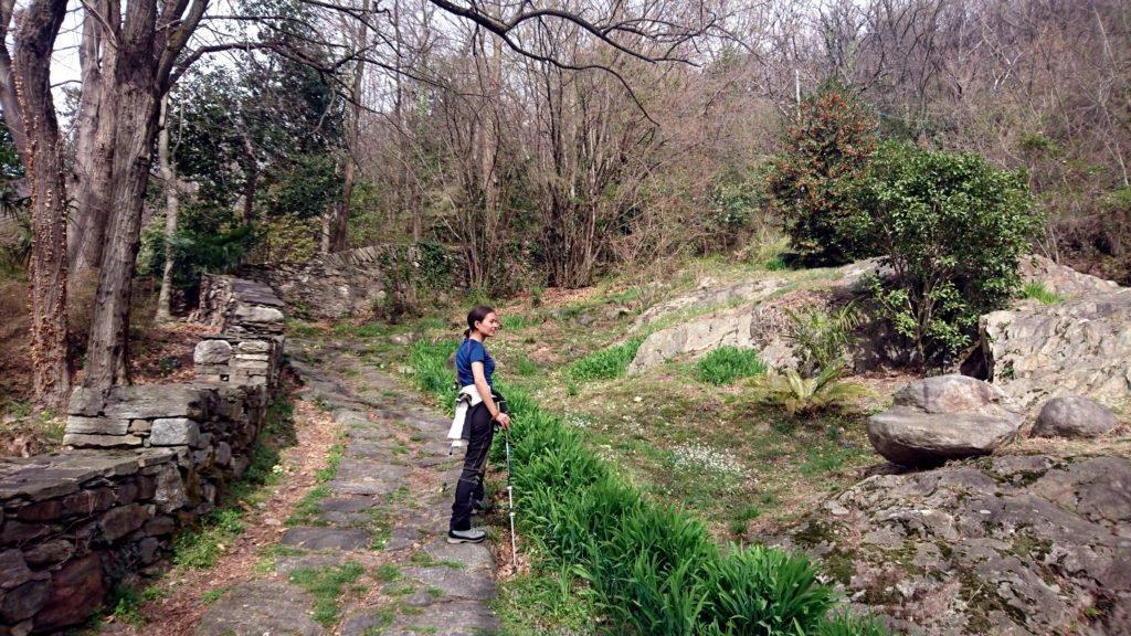 il giorno seguente decidiamo di seguire il consiglio di un escursionista incontrato scendendo a Trontano, abbandoniamo il versante nord, ancora troppo innevato, e ci dirigiamo a Bracchio, paesino sopra Mergozzo, da cui parte la comoda mulattiera che conduce all'Alpe di Vercio
