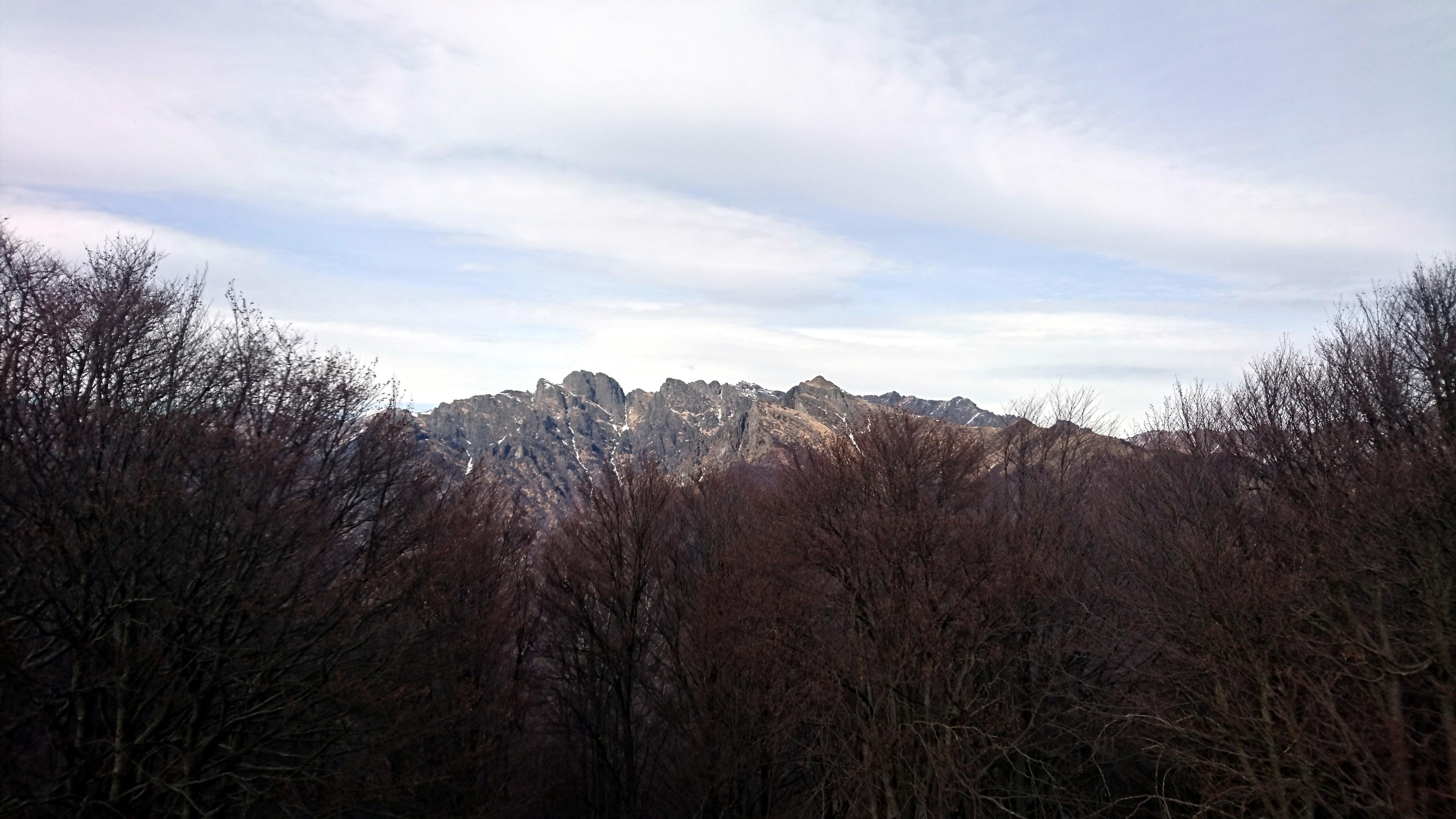 dalla cima del Fajè si vede bene il Pedum e la cresta che lo lega alla Laurasca (ancora innevata), oltre che la Cima Sasso (che invece abbiamo già salito anni fa: http://www.inmontagna.blog/cima-sasso-val-grande/)