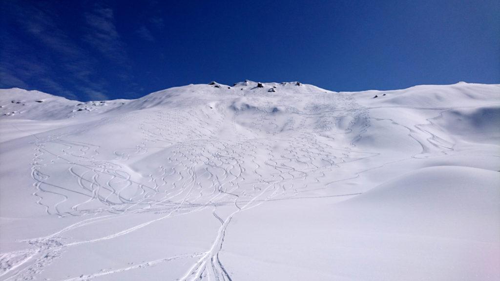 Lo spettacolare pendio finale appena disceso, con tutte le sbisciule degli scialpinisti che ne hanno potuto godere il manto