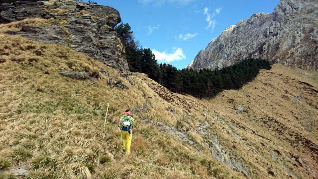 Qui bisogna prendere una traccia di sentiero che procede in costa verso sinistra tagliando il fronte della montagna