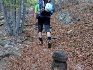 Fungo intagliato nel legno lungo il sentiero nel bosco