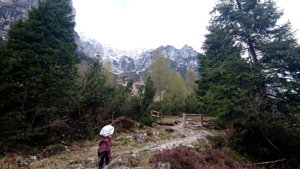 Il sentiero sale poi sul versante opposto della valle rispetto alla strada fino a raggiungere un bellissimo alpeggio