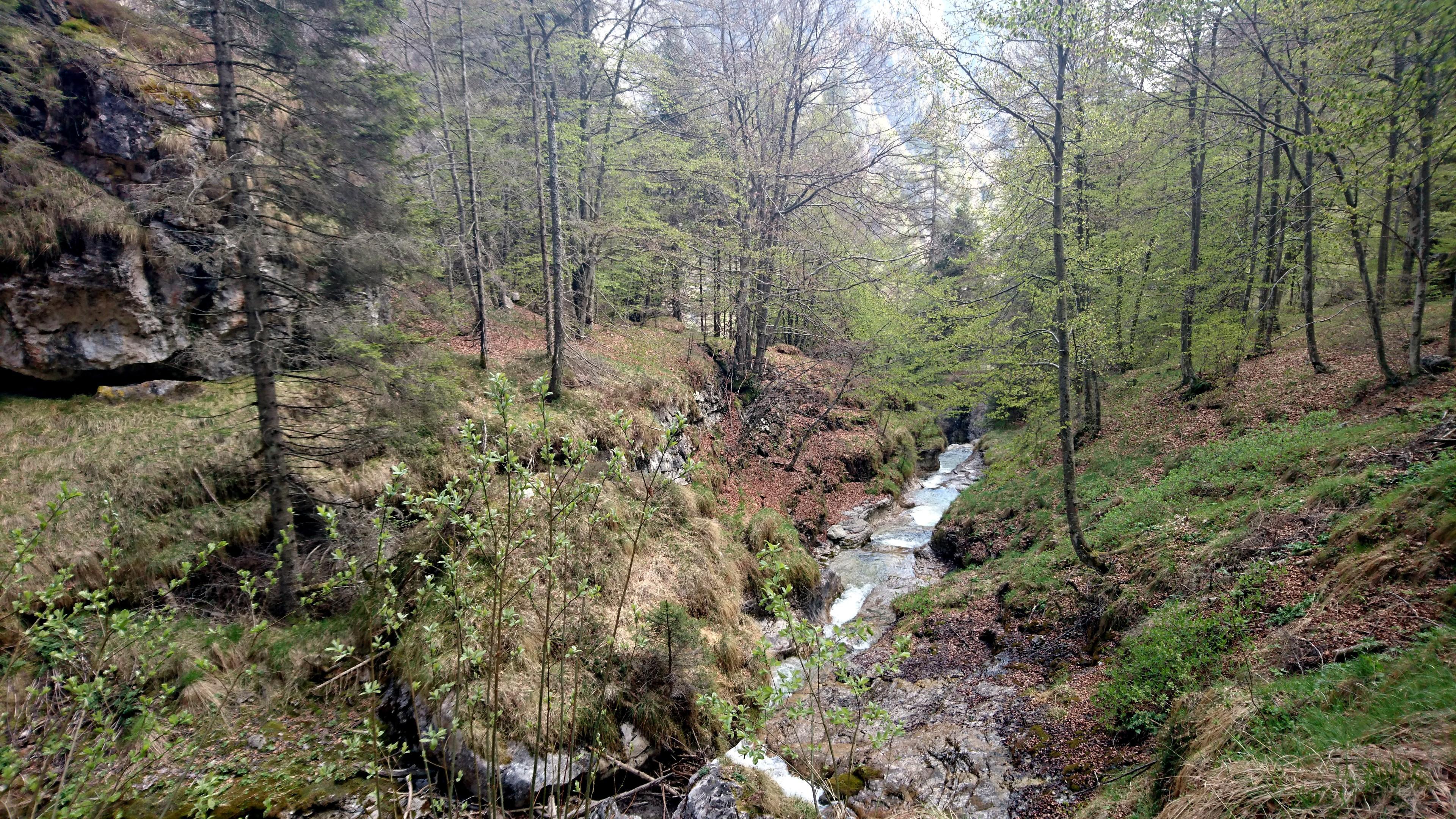 Il torrente in questo pezzo fa tanti piccoli saltini in altrettante pozze che d'estate devono essere uno sballo per fare il bagnetto