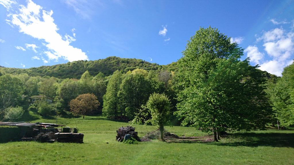 Il pratone e le e le belle casette dell'alpe Casavei, a due passi da dove siamo partiti stamattina