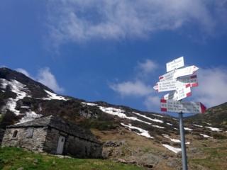 il piccolo alpeggio di Cortenuovo, pochi minuti sotto l'alpe Scaredi