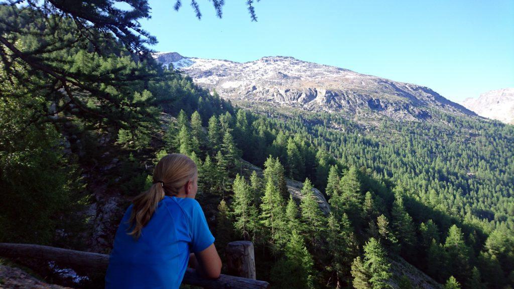 Ci avviciniamo al termine del bosco. Due minuti di riposo in un punto dove gli alberi si diradano un po'