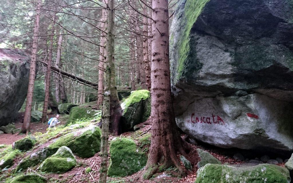 La cascata nella prima parte è ben indicata e il sentiero, a volte ripido, è comunque agevole