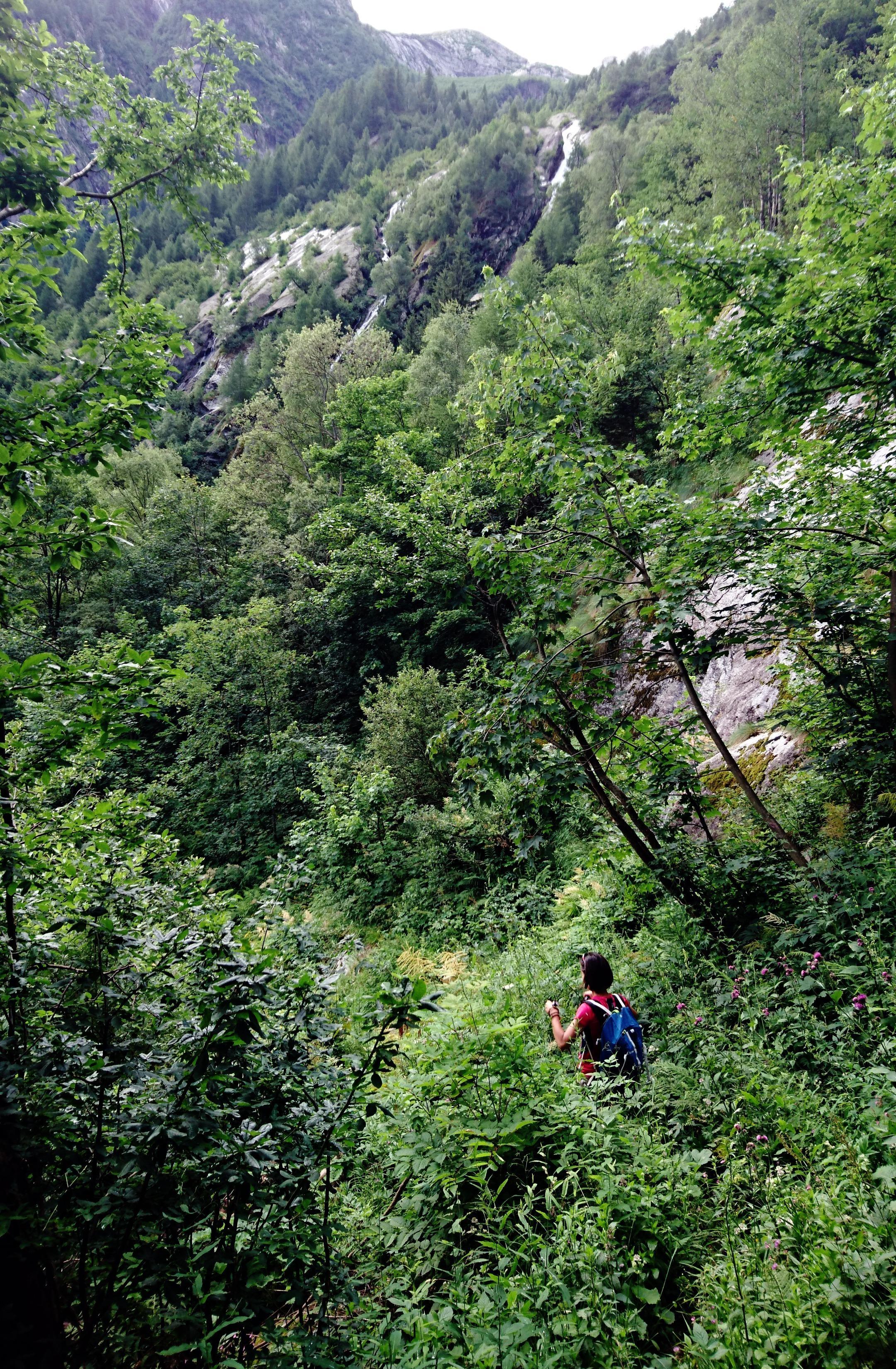 Spesso MOOOLTO abbondante di vegetazione! :P