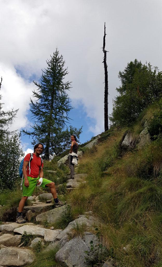 io, Erica e un povero albero colpito da un fulmine