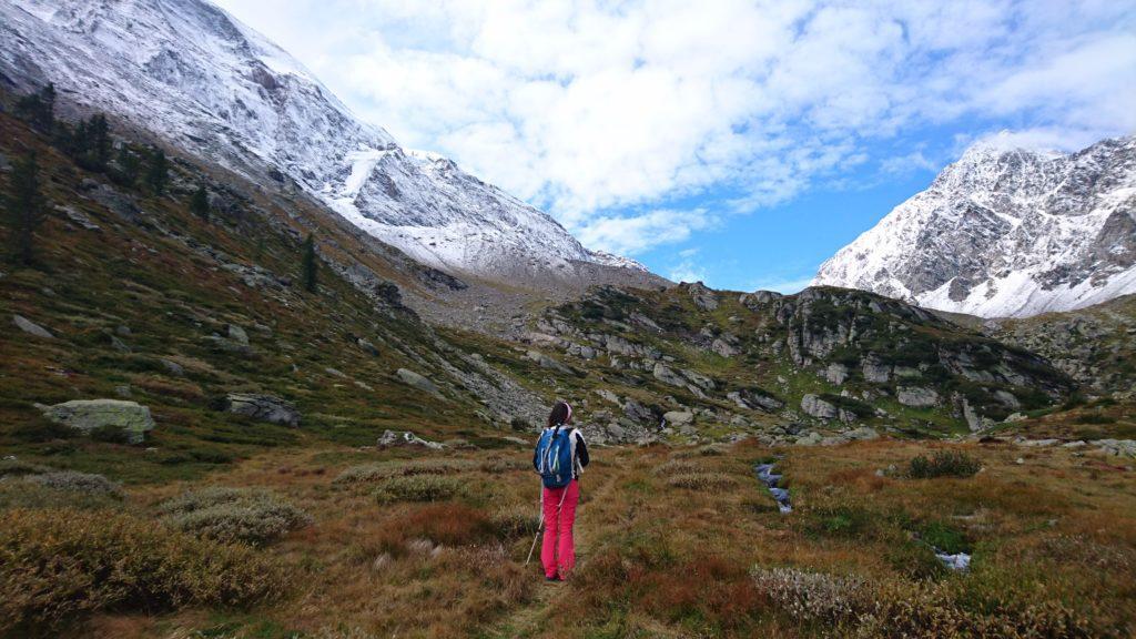 la parte superiore della valle, con la vegetazione tipica over 2000