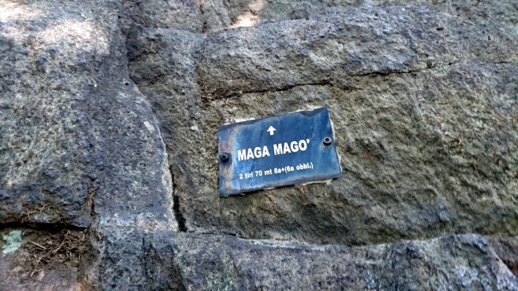 Attacchiamo Maga Magò. Probabilmente non è frequentatissima perché dovremo destreggiarci tra i rovi....e non sarà simpatico