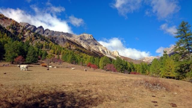 begli scorci autunnali dai pascoli della valle Stretta