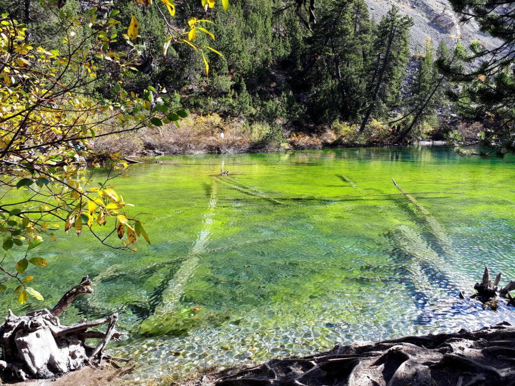 se non altro non ci sono dubbi sul perché si chiami lago Verde.....sembra un acquarello!!