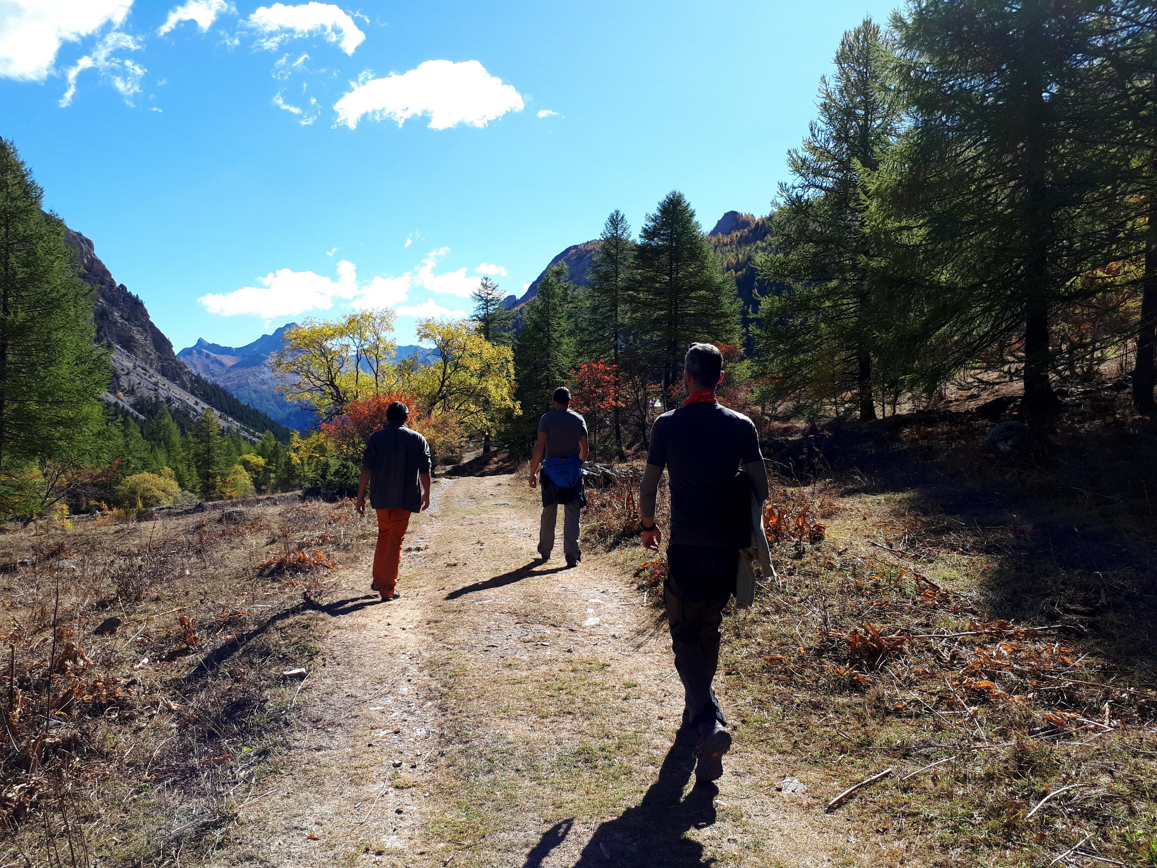ancora un po' di colori autunnali in valle Stretta