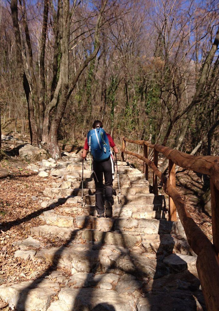Dalla località Pozzo di Civate, si segue la mulattiera in direzione del Monastero di San Pietro al Monte, fatta di taaaaanti bei gradoni di pietra