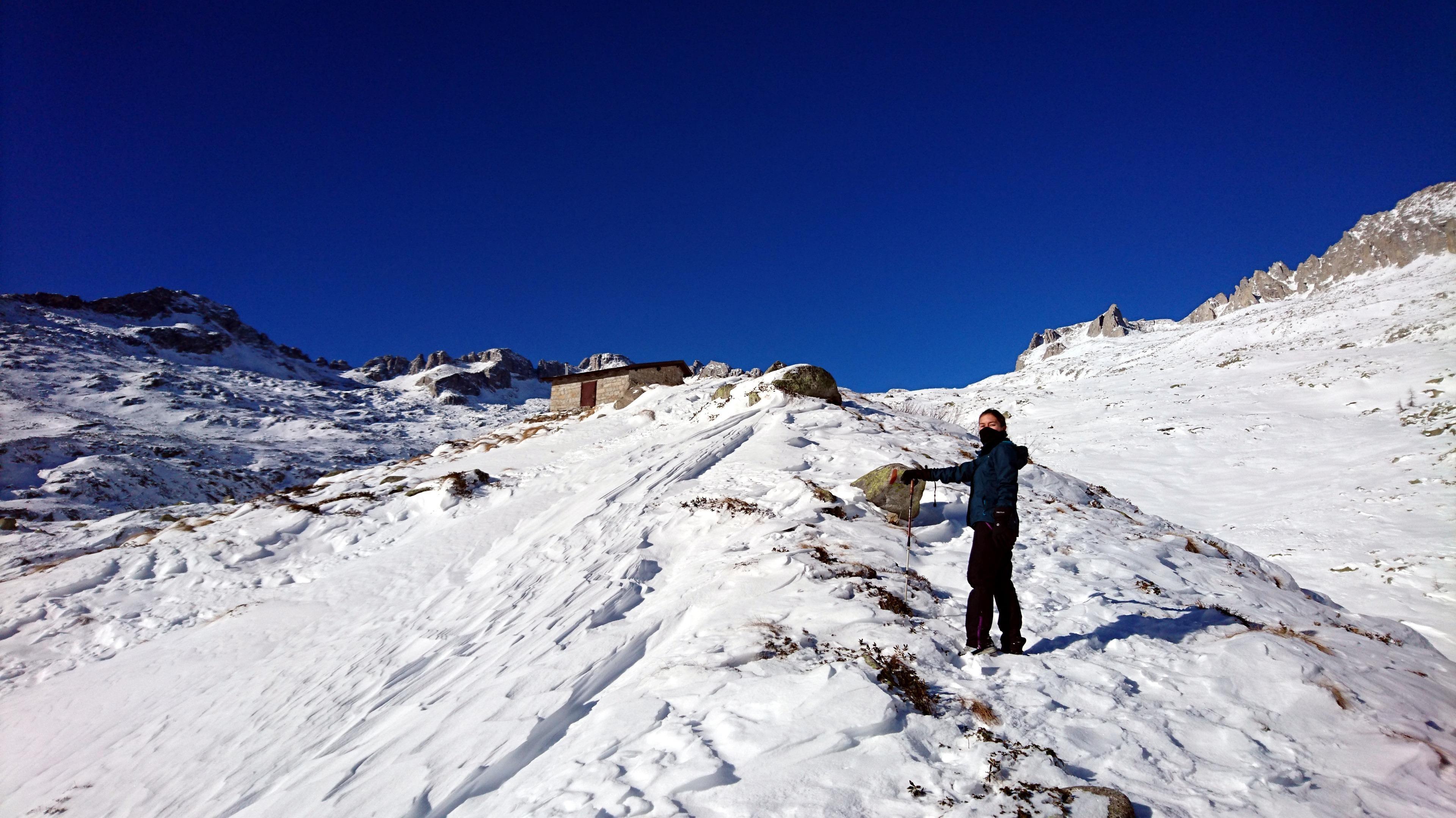 Erica sul tratto finale di cresta che porta al bivacco Roberti. Oggi quassù tira un vento gelido che ve lo raccomando