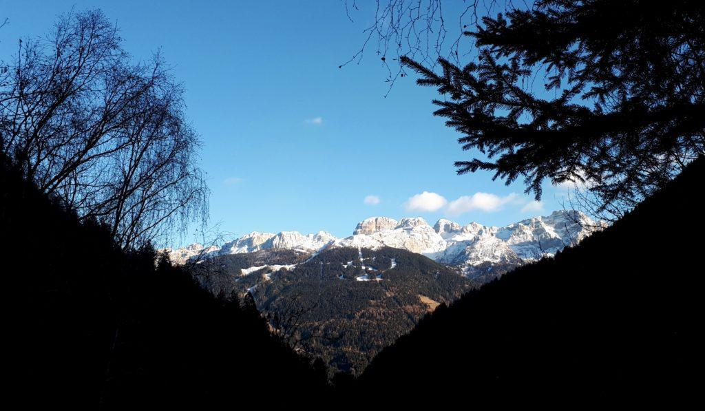 Vista del Brenta dal bosco di discesa. Al centro, il Crozzon del Brenta e la Cima Tosa