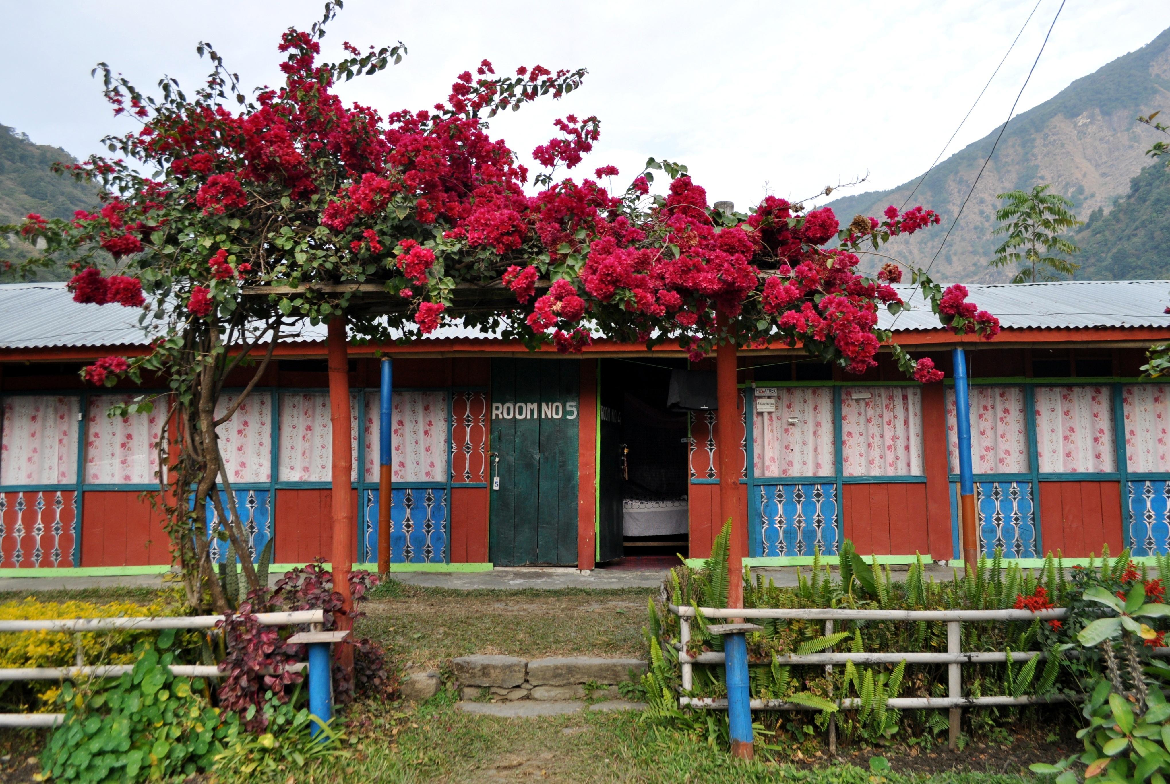 Arrivati a Ngadi decidiamo di fermarci per la prima notte. in questa guest house molto carina e fiorita