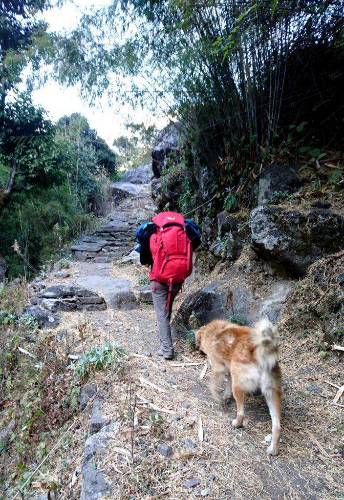 A Nache si riattraversa nuovamente il fiume e questo cane decide di seguirci....almeno fino al prossimo guado!