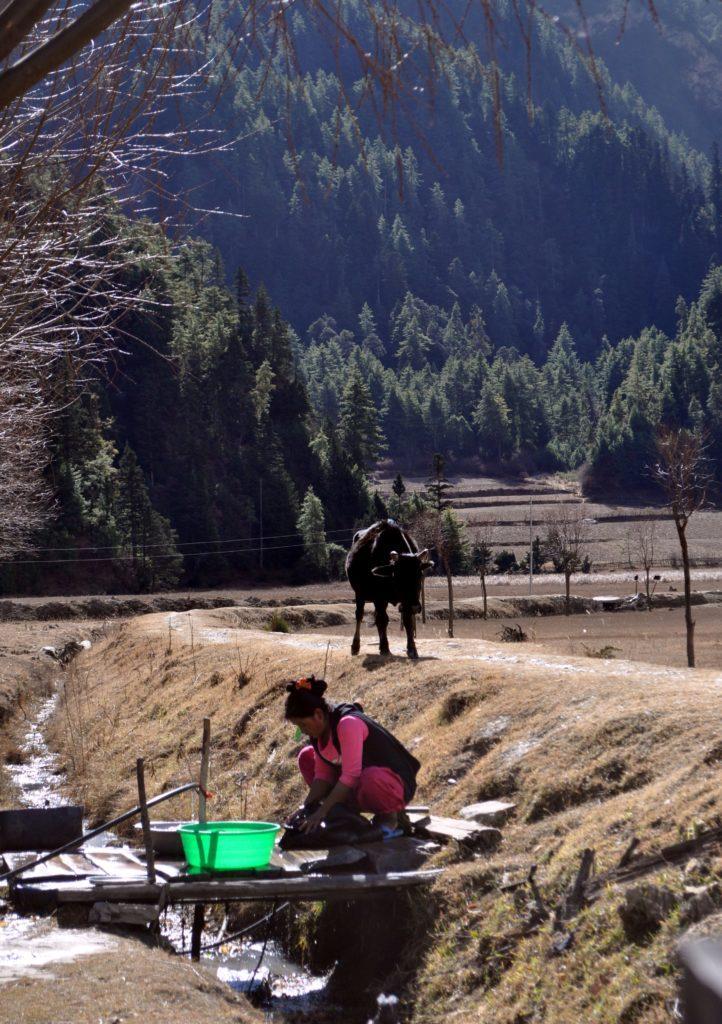 scene di vita rurale nepalese