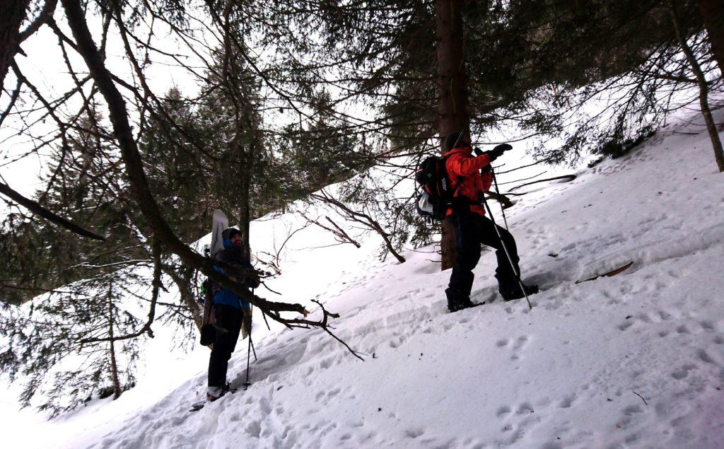 Il primo tratto nel bosco è a tratti ripido e con qualche passaggio non semplice. Pensiamo che al ritorno varrà la pena trovare una strada migliore