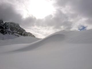 Metri e metri di neve polverosa e immacolata