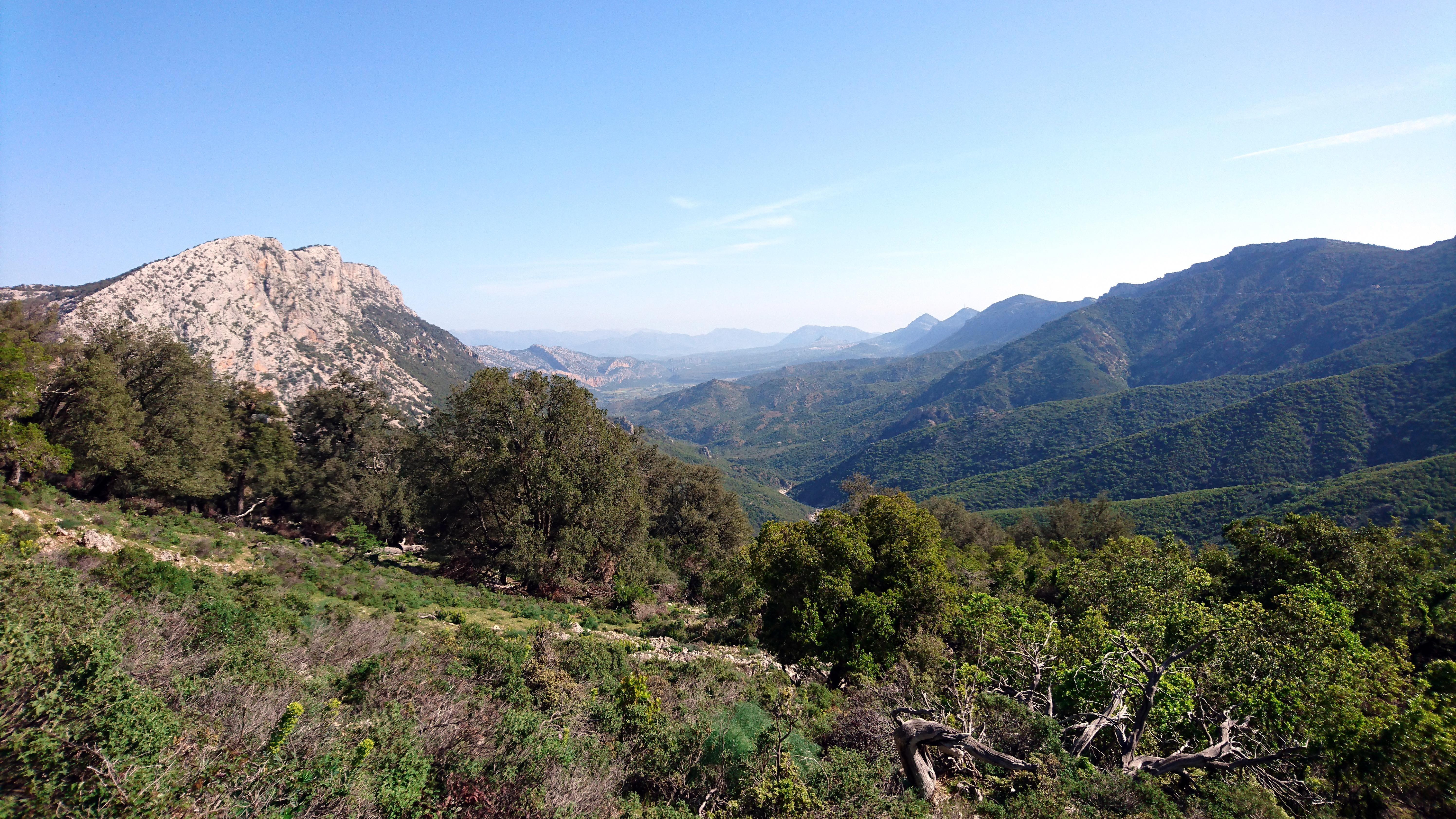la vista lungo la Valle dell'Oddeone: a destra la cresta del monte Oddeu