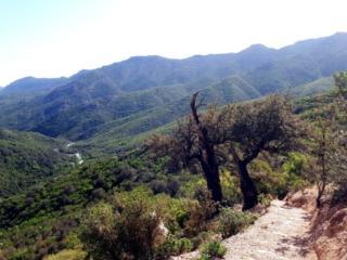 lungo il sentiero che parte dal Passo di Genna Silana