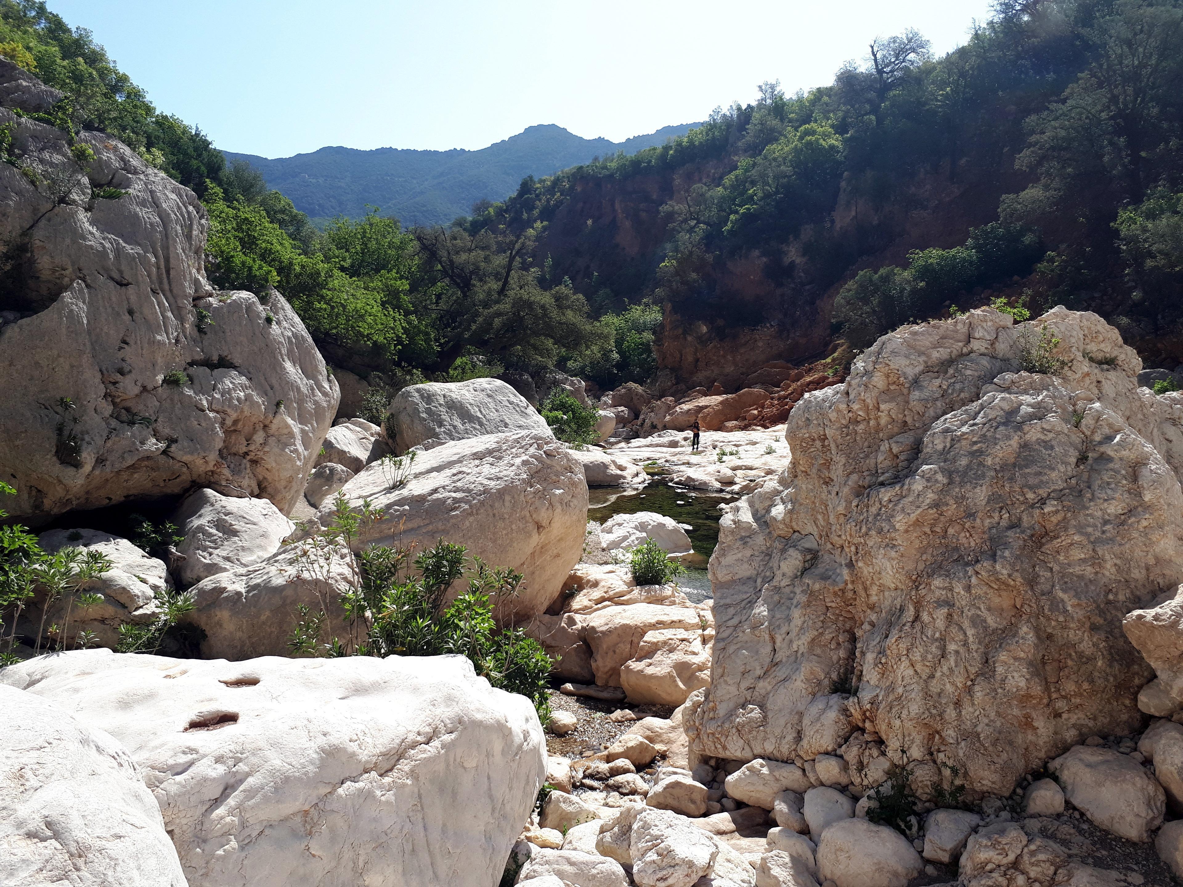 l'imbocco del Canyon, con il Rio Flumineddu che sbuca in superficie