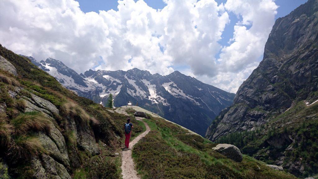 tra poco rientreremo nel bosco: ultimo sguardo alle cime dell'opposto versante della Val di Mello