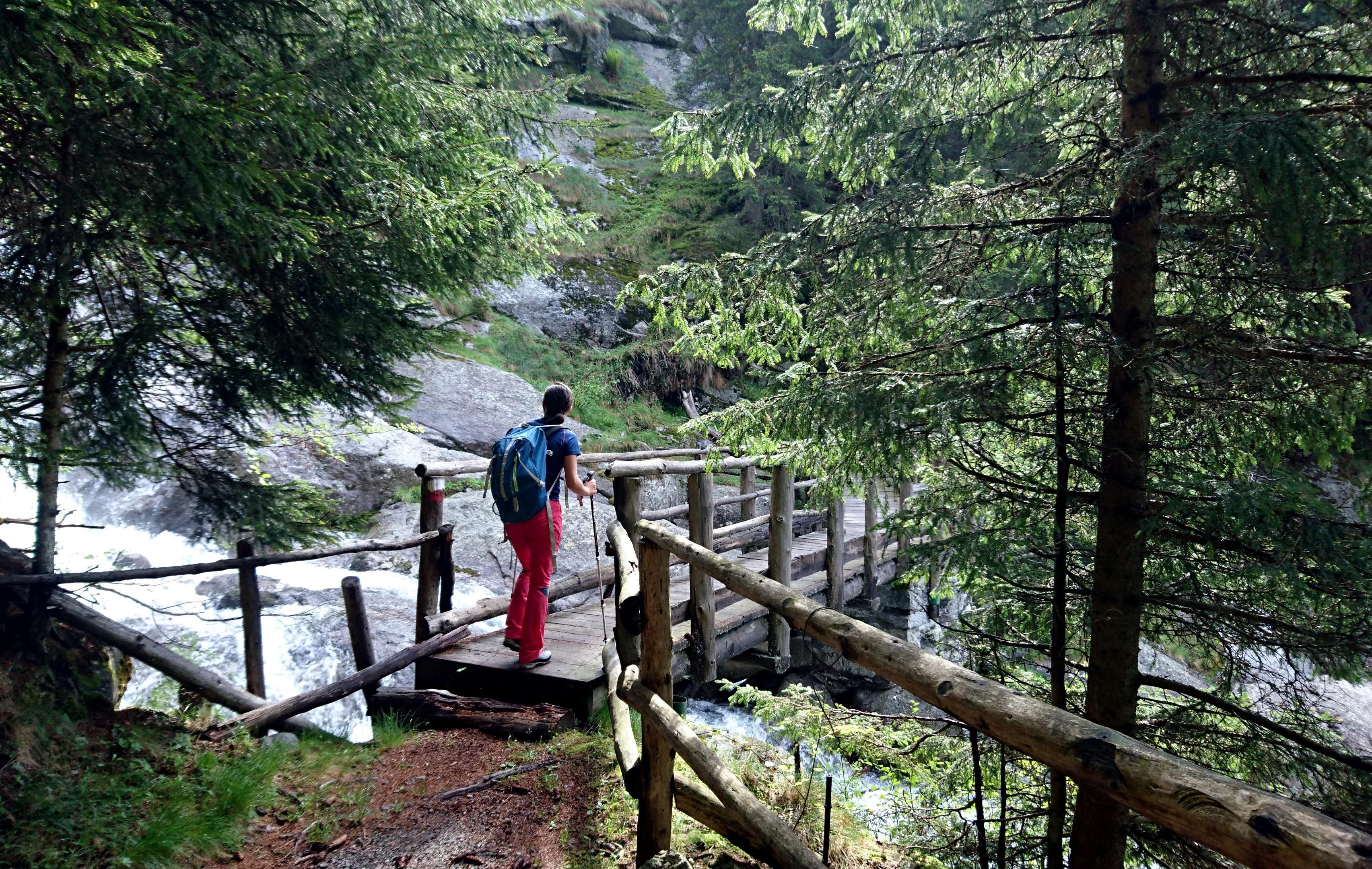 il ponticello che attraversa il torrente: metà bosco è alle spalle