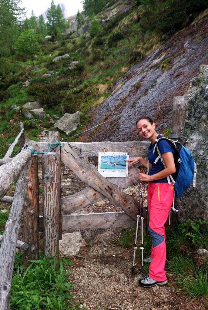 zona di pascolo: il cartello segnala la presenza di cavalli... forse non era ancora stagione, perchè non ne abbiamo visti