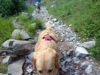 in marcia sul sentiero della Val Biandino: muso basso e concentrazione, che la giornata è appena cominciata!