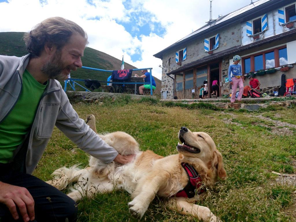 gioco, coccole, pappa, nanna: cane fortunato