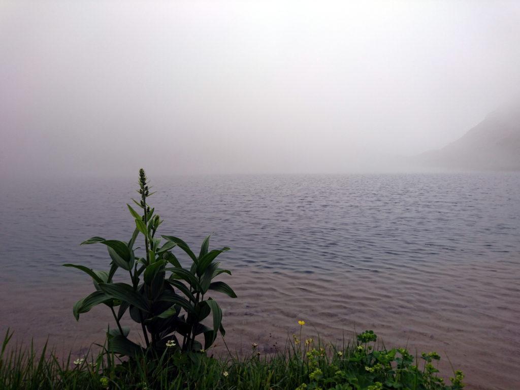 A valle le nuvole fanno da padrone. Vista del lago Fiorenza tra le nubi