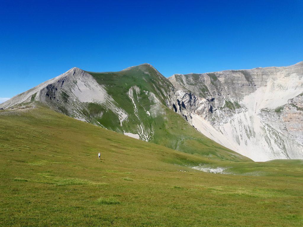 i declivi erbosi che caratterizzano il Monte Vettore