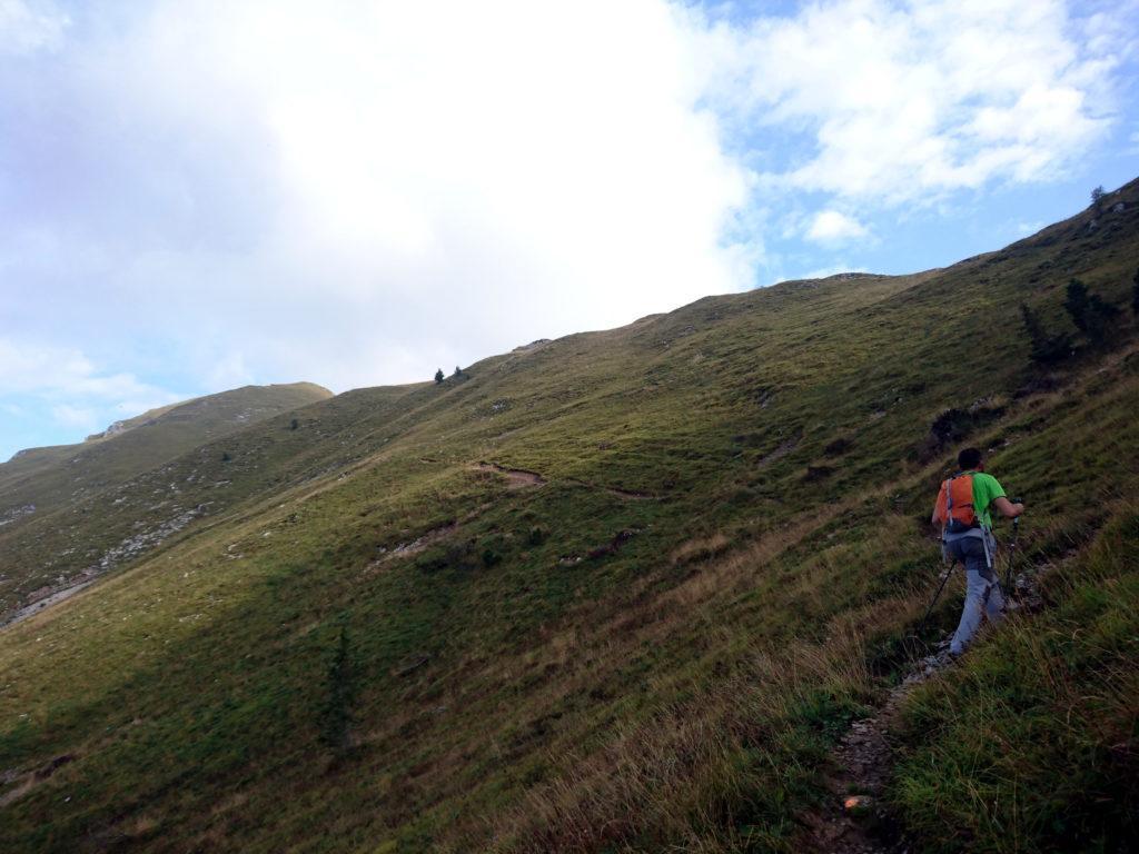 dalla baita si sale poi per prati fino a raggiungere il passo del Monte Colle