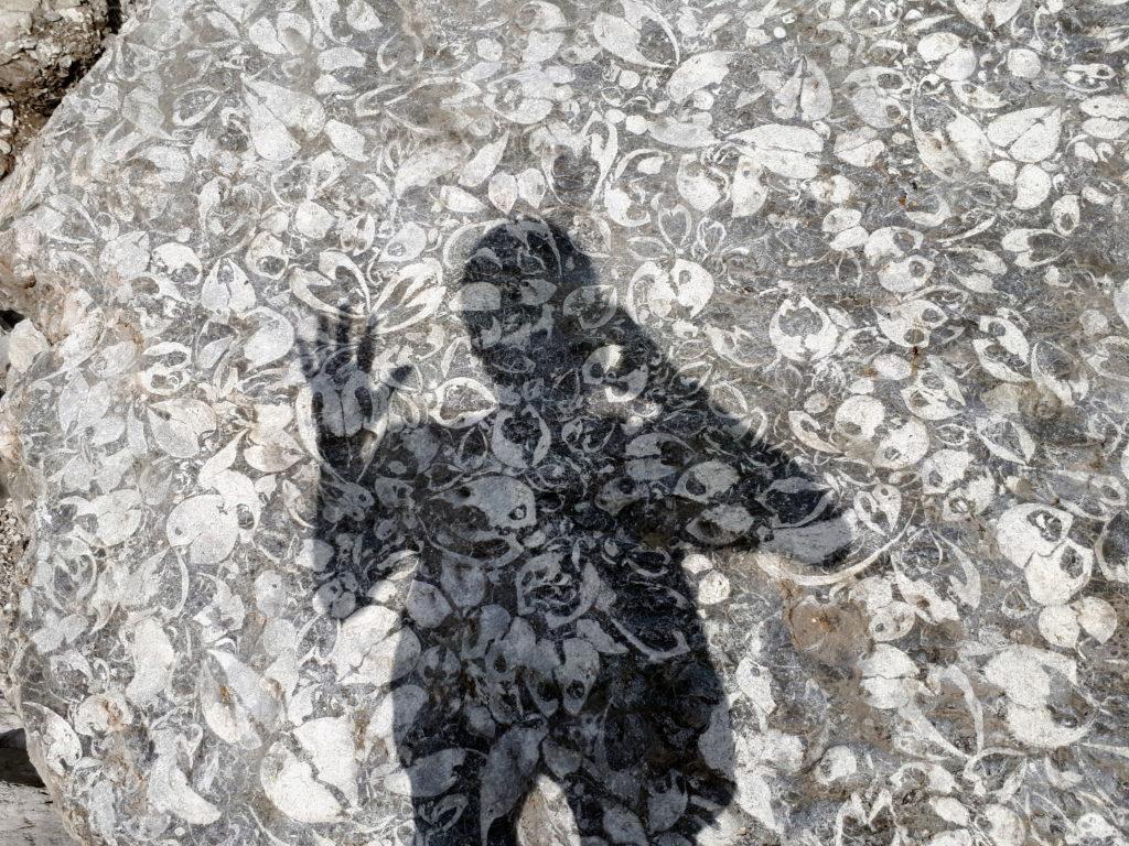l'incredibile masso pieno di fossili del Vallon con l'ombra di Erica che dà un riferimento dimensionale