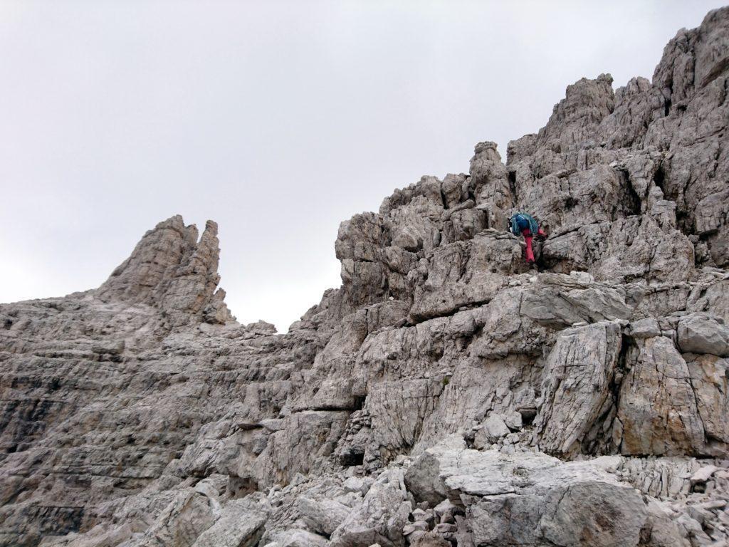 Erica sulle roccette finali che portano all'anticima della cima Molveno
