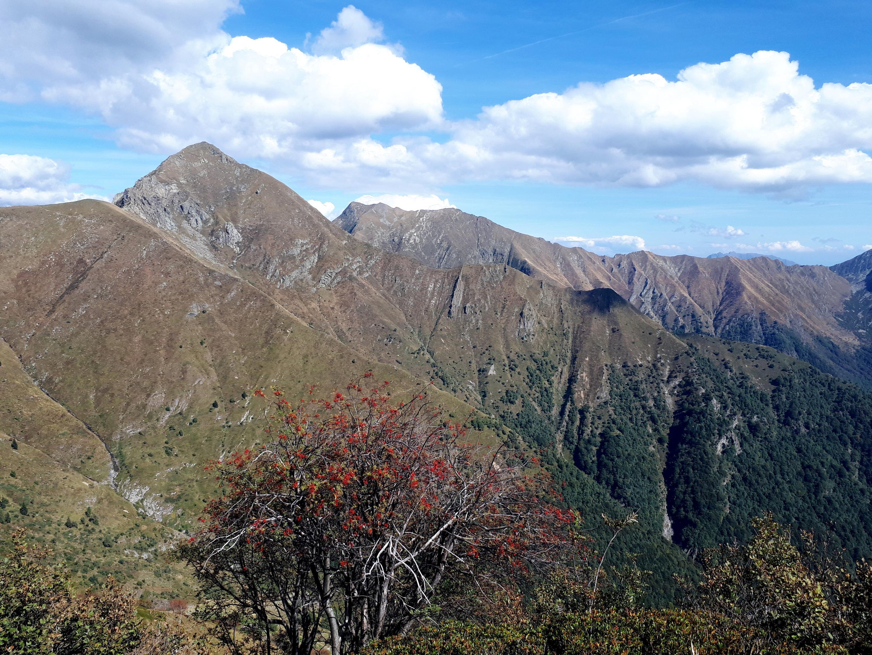 in alto a sinistra, il passo di Basagrana, che raggiungeremo il giorno seguente