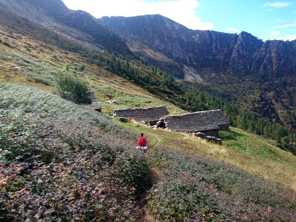 l'Alpe Menta alla base della salita verso il Ragozzale