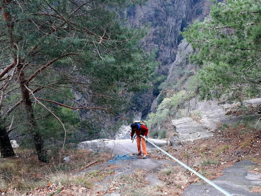 la prima delle calate è situata proprio in corrispondenza del guard rail, dove la macchia boschiva si dirada