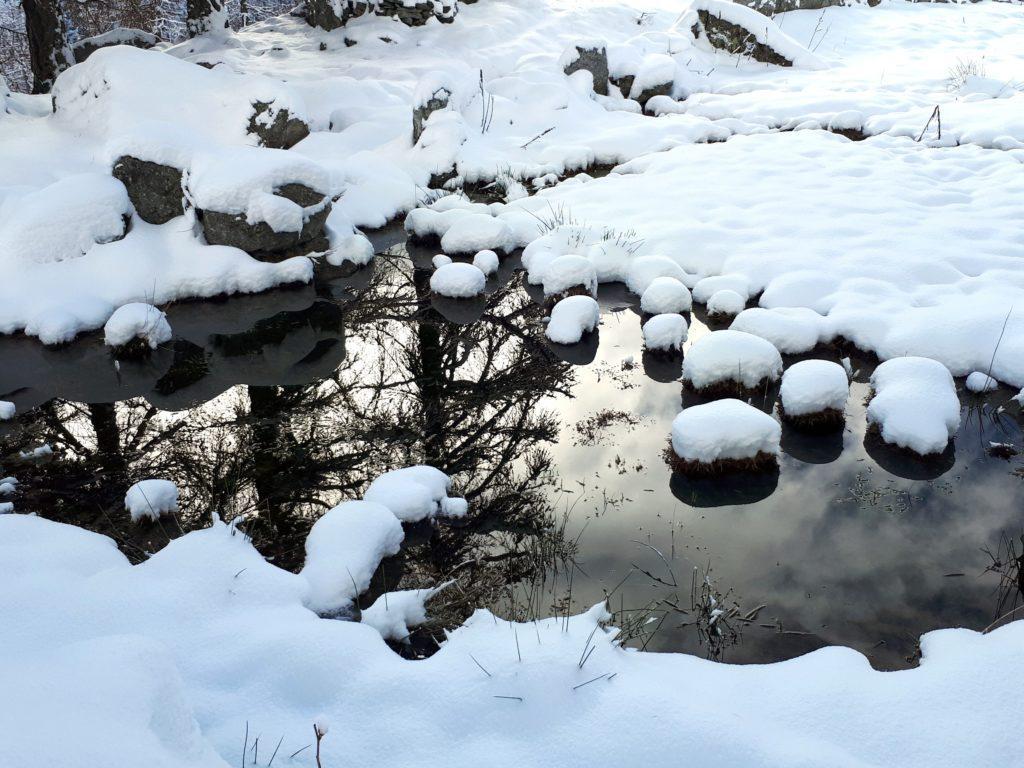 tutta la zona è ricchissima di acqua, che scorre sotto la neve e si raccoglie in pozze