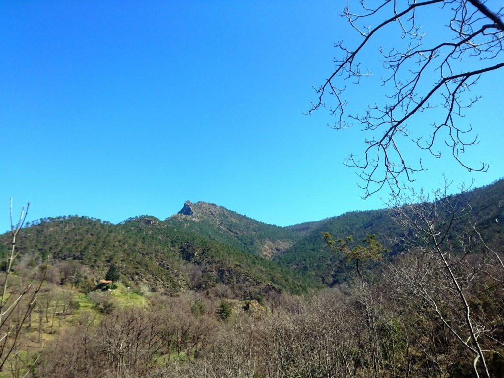 la vista verso la valle del Rio Baiardetta, con la cima dalla caratteristica forma a pinna